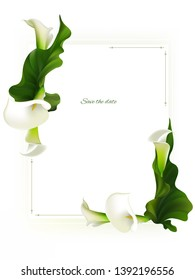 Flowers. Floral background. Green leaves. Border. Callas.