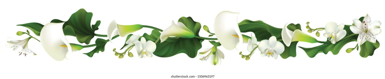 Flowers. Floral background. Orchids. Calla. White. Green leaves. Horizontal pattern. Lilies.