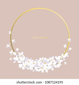 Flowers. Floral background. White lilac. Border. Gold ring. Vector illustration. Small. Buds. Petals.
