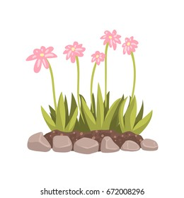 Flowers growing in the flowerbed cartoon vector Illustration
