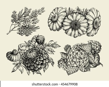 Flowers. Hand drawn sketch of chamomile, mimosa, hortensia, dahlia. Vector illustration