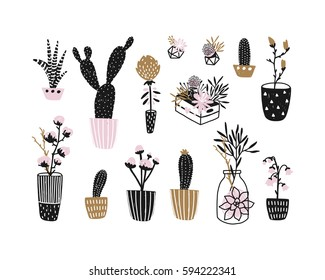 Flowers, houseplants and geometric centerpieces, vector floral set. Gold and pink. Spring bundle with succulents, cage, cactus, branches, leafs