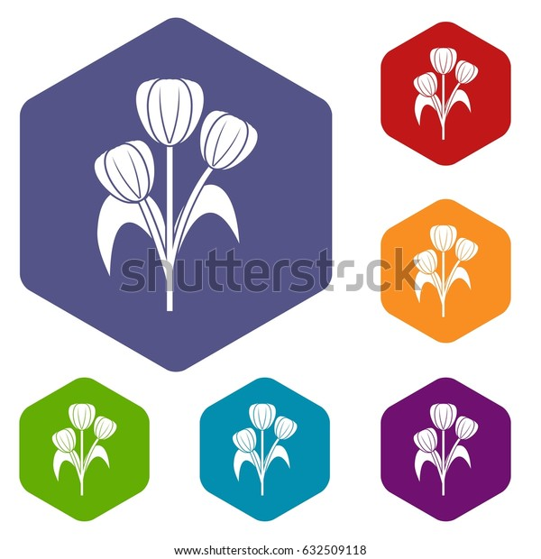 Flowers icons set hexagon isolated vector illustration