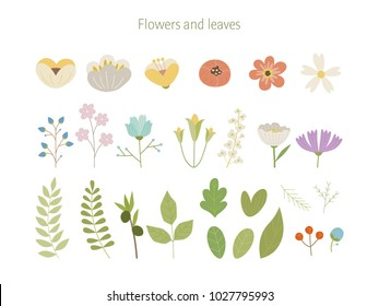 Flowers and leaf sauces. hand drawing style vector illustration flat design