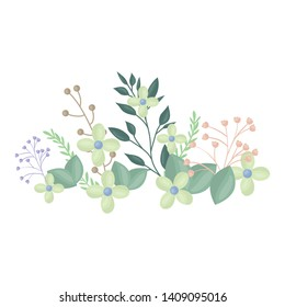 flowers and leafs decoration vector illustration