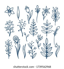 Flowers, leafs and floral design elements sketch drawing collection. Hand drawn floral brushes. Sketch drawing simple plants illustrations. Part of set.