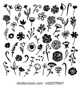Flowers, leaves, herbs, plants, branches set. Hand drawn isolated on white background. Floral design elements