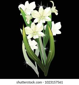Flowers on a homogeneous background. Vector illustration