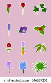 Flowers and plants - vector