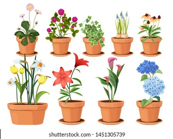 Flowers pot. Nature cartoon vector illustration of flowers and leaves beautiful collection. Blossom plant, botanical flowerpot