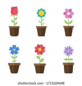 Flowers in pots flat icons. Color vector illustration. Different flowers in pots with green leaves vector illustration. Logo design, business and promotion concept