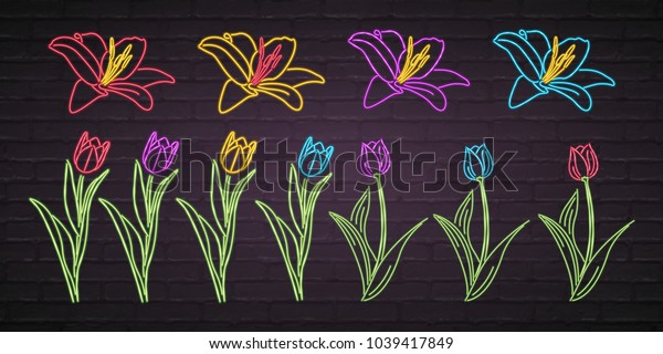 Flowers Set Vector Neon Light Glowing Graphic Illustration. Different Colours Flower Sets Bright