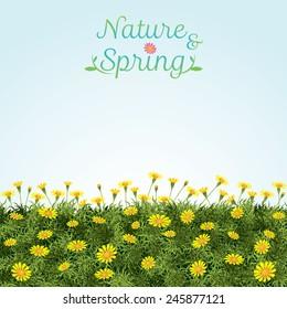 Flowers Spring Field Season Background - Shutterstock ID 245877121