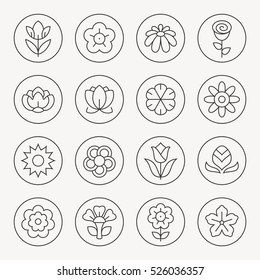 Flowers thin line icon set