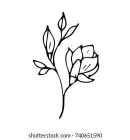 Flowers vector illustration. Birthday card. Doodle style. Design, print, logo, decor, textile, paper.