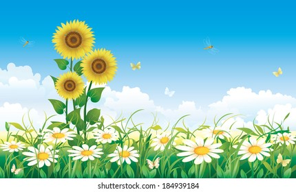 Flowery meadow with daisies and sunflowers