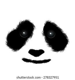 Fluffy panda face isolated