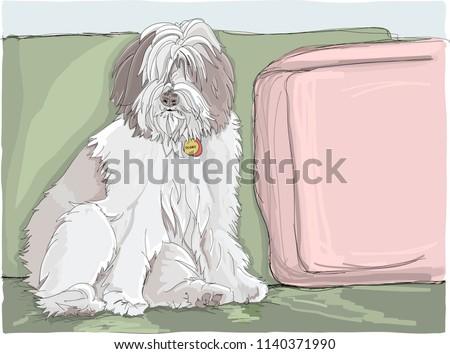 Fluffy Sheepdog Full Fur Sitting On Stock Vector (Royalty Free