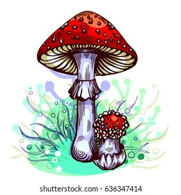 Fly agaric mushroom with grass on background in engraved style. Vector illustration.