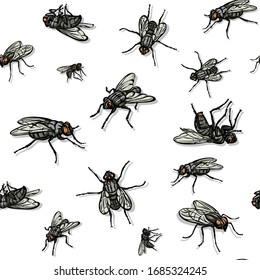 Fly, fly pattern, realistic image, color