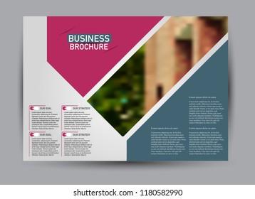 Flyer, brochure, billboard template design landscape orientation for business, education, school, presentation, website. Blue and pink color. Editable vector illustration.