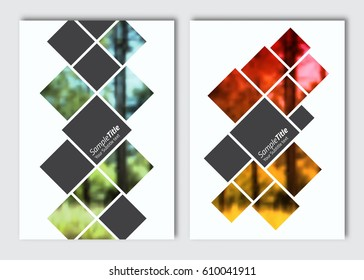 Flyer layout template. Vector brochure background with elements for magazine, cover, poster, layout design. A4 size.