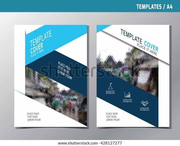 Flyer Leaflet Brochure Template Design A4 Stock Vector (Royalty Free