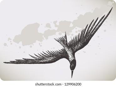Flying Bird Sketch Images Stock Photos Vectors Shutterstock