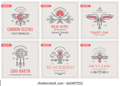 Flying Bird Logo design with decorative elements, geometric tribal archaic set of emblems. Collection of linear style vector templates for company concept, branding, heraldic design, tattoo, printing.