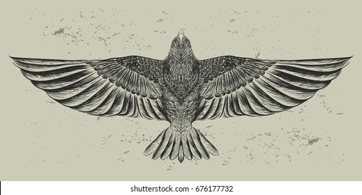 Flying bird on the grunge background. Hand drawn owl. Vector isolated illustration. Sketch of tattoo art. Design print for t-shirt. Symbol of freedom.