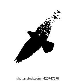 Flying Birds Abstract. Vector