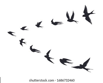 Flying birds flock silhouette. Swallows, sea gull or marine birds isolated on white background. Vector bird icon set flock flying in sky