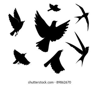 flying birds silhouette on white background, vector illustration