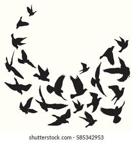 Flying birds silhouette vector background