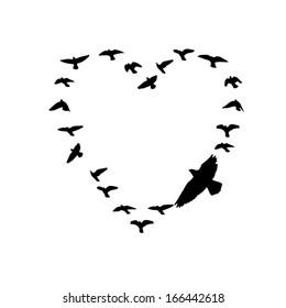 Flying birds in the sky in the shape of heart. Vector