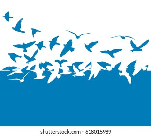Flying birds in the sky. Vector