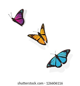 FLYING BUTTERFLIES. Botanical freedom graphic elements. Vector file.
