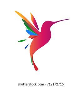 Flying colibri logo. For business, education and natural company logo