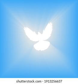 Flying dove. Blue background with bright rays. Easter. The symbol of purity. Christian faith. Holy Spirit. Vector illustration.