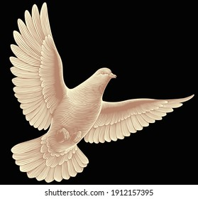 Flying dove. Hand drawn engraving. Vector vintage illustration. 8 EPS