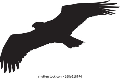 Flying eagle silhouette vector on white background
