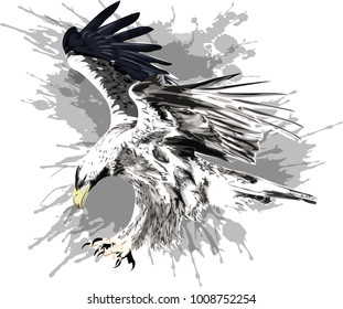 Flying eagle. Stylized vector illustration