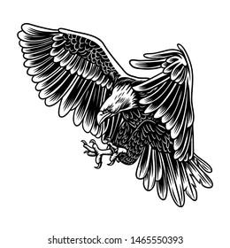 flying eagle vector design illustration