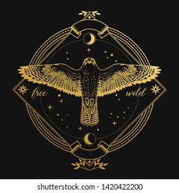 Flying falcon in ornate frame on black background. Vector hand drawn illustration in dark bohemian style
