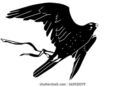 flying falcon with ribbon tattoo vector black and white