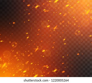 Flying fiery sparks. Glowing particles. Vector effect with transparency.