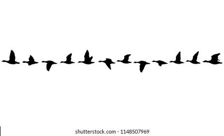 Flying flock of geese in the fall, line of birds in the sky isolated on white background seamless