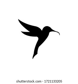 Flying hummingbirds, vector illustration, isolated tropical birds with white background