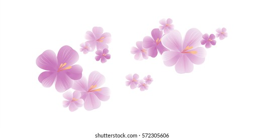 Flying light purple flowers isolated on white background. Apple-tree flowers. Cherry blossom. Vector