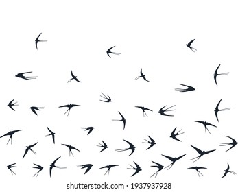 Flying martlet birds silhouettes vector illustration. Nomadic martlets group isolated on white. Gliding flying swallows line art. Little birds in sky graphic design. Wildlife concept.